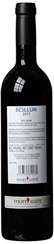 Celler Malondro Besllum D.O. aus Spanien/Montsant Jahrgang 2012 trocken (1 x 0.75 l) -