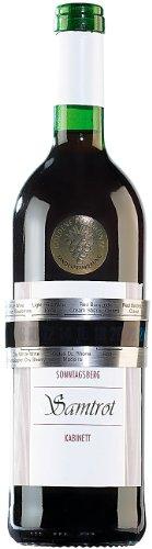 Rosenstein & Söhne Flaschen Weinthermometer -