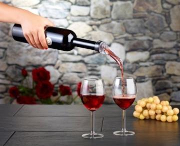 Rosenstein & Söhne Weindekantierer mit Ausgießhilfe -