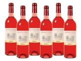 Skoonuitsig Rosé Pinotage 2014/2015 Trocken (6 x 0.75 l) -